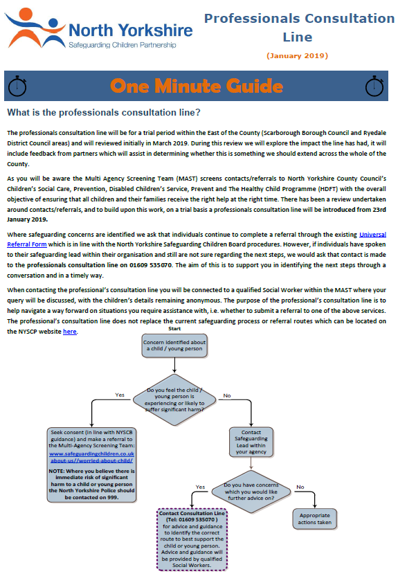 Flowchart explaining the Professional Consultation Line One Minute Guide