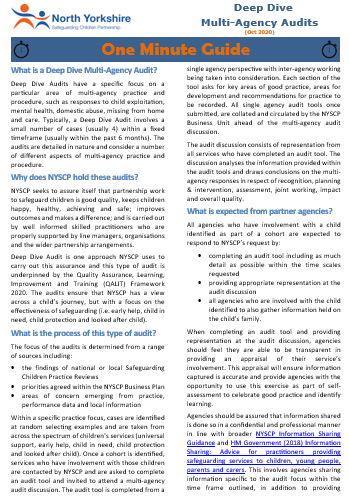 Download the NYSCP Multi-Agency Deep Dive Audit OMG
