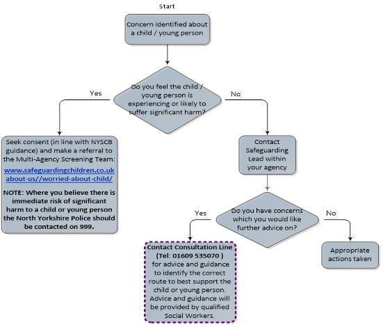 Flowchart explaining the Professional Consultation Line
